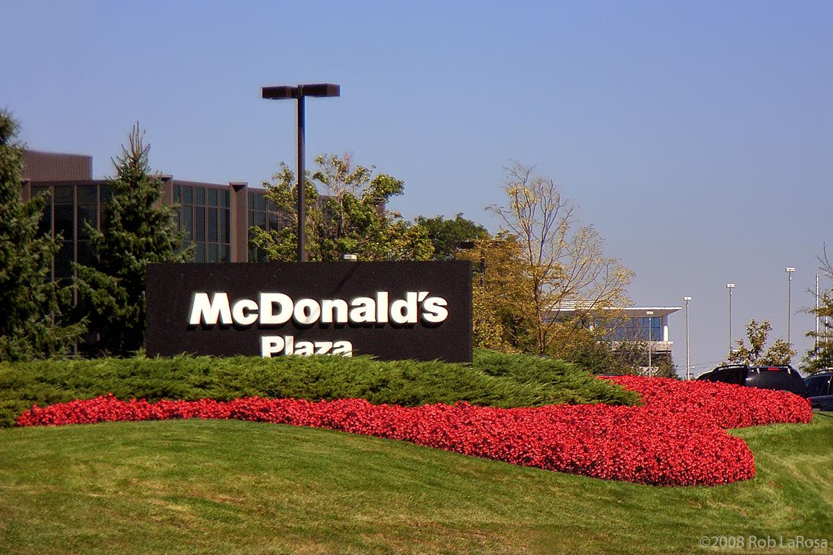 Английский для бизнеса. Франшиза.McDonald's.