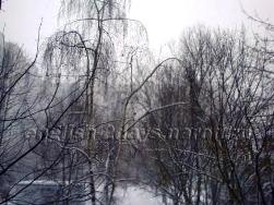 Декабрь Деревья в снегу